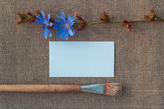 Blank paper, brush and flower on sacking Stock Image
