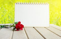 Blank paper calendar page and red rose flower over nature green field grass Royalty Free Stock Image
