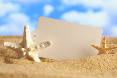 Blank paper card and starfish on beach Royalty Free Stock Image