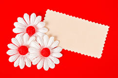 Blank paper card with white daisy flower. Royalty Free Stock Photos