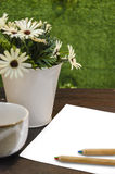 Blank paper and color pencil and coffee cup Stock Photography