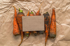 Blank paper with dirty carrots on a crumpled paper Stock Image