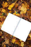 Blank paper on fall leaves Stock Photo