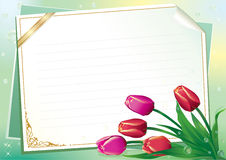 Blank paper with floral ornament Stock Photos