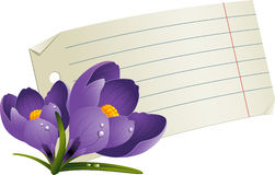 Blank paper with flowers for a romantic message Stock Photography