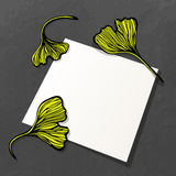 Blank Paper And Ginkgo Leaves Stock Photos