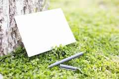 Blank paper on green grass Royalty Free Stock Image