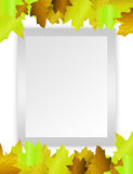 Blank paper green leafs Royalty Free Stock Photography