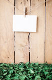 Blank paper hanged on a wooden wall  Stock Photo
