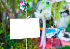 Blank paper hanging on tree Stock Images