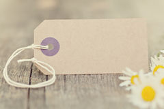 Blank Paper label. Outdoor with fresh chamomile flowers Royalty Free Stock Images
