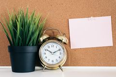 Blank paper note on cork board with golden alarm clock and green plant in pot. Memo and time management concept. blank note for copy space or typography Royalty Free Stock Image