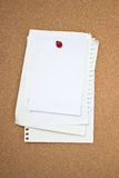 Blank paper. Blank paper pin on wooden board Stock Image