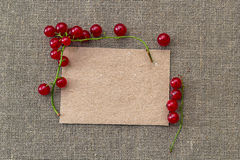 Blank paper and red currant Royalty Free Stock Image