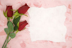 Blank paper with red rose Royalty Free Stock Image