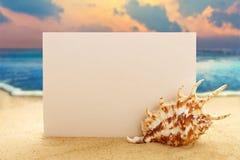 Blank paper with seashell on sandy beach Stock Photos