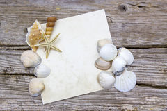 Blank paper with seashells Royalty Free Stock Photos