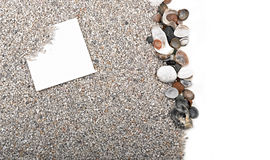 Blank paper sheet, sand and shells Royalty Free Stock Photography