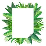 Blank paper Tropical leaves Stock Images
