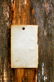 Blank paper on wooden background Stock Photos