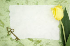 Blank paper with yellow tulip and old key Stock Photos