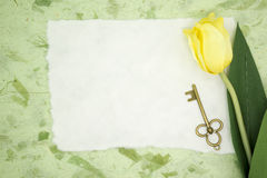 Blank paper with yellow tulip and old key Royalty Free Stock Image