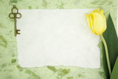 Blank paper with yellow tulip and old key Royalty Free Stock Images