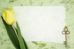 Blank paper with yellow tulip and old key Royalty Free Stock Photos