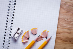 Blank Papers and Pen with Crumpled Papers on Sides Royalty Free Stock Images
