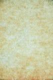 blank parchment Arkivbild