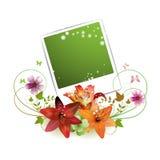 Blank photo Stock Photography