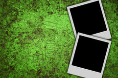 Blank photo. On grunge green background Stock Photography