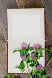 Blank photo album and clover flowers Stock Photos