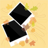 Blank photo with autumn leaves Royalty Free Stock Photography