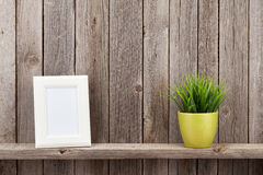 Blank photo frame and plant Stock Photography