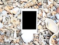 Blank photo frame on sea shell Stock Photos
