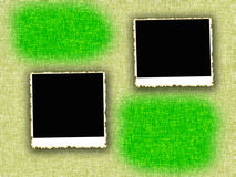 Blank photo frames Royalty Free Stock Photo