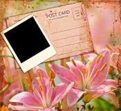 Blank Photo on Grunge Background Royalty Free Stock Image