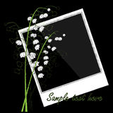 Blank Photo With lilies of the valley Royalty Free Stock Photos