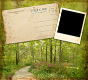 Blank Photo & Postcard Stock Image