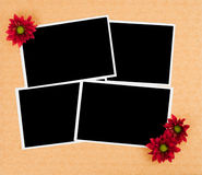 Blank photo prints and flowers Royalty Free Stock Images