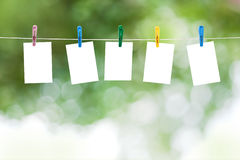 Blank photos hanging on a clothesline Stock Images
