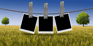 Blank Photos Hanging on Rope in the Countryside Royalty Free Stock Images