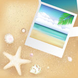 Blank Photos With Starfish. Vector Stock Photo
