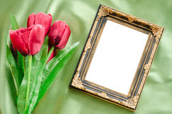 Blank Picture frames and red tulips flowers. Royalty Free Stock Photography
