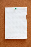Blank piece paper pinned into corkboard Stock Images