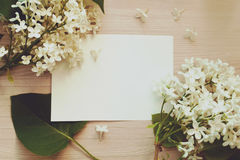 Blank piece of paper Royalty Free Stock Photos