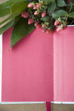 Blank pink page Stock Images