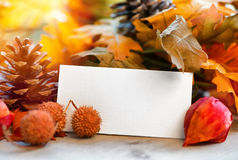 Blank Place Card Amongst Autumn Foliage Stock Images