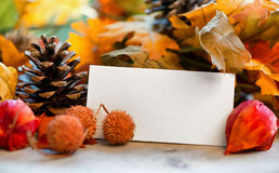 Blank Place Card Amongst Autumn Foliage Stock Photography